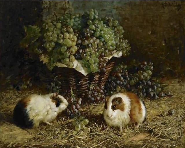 old painting of guinea pigs