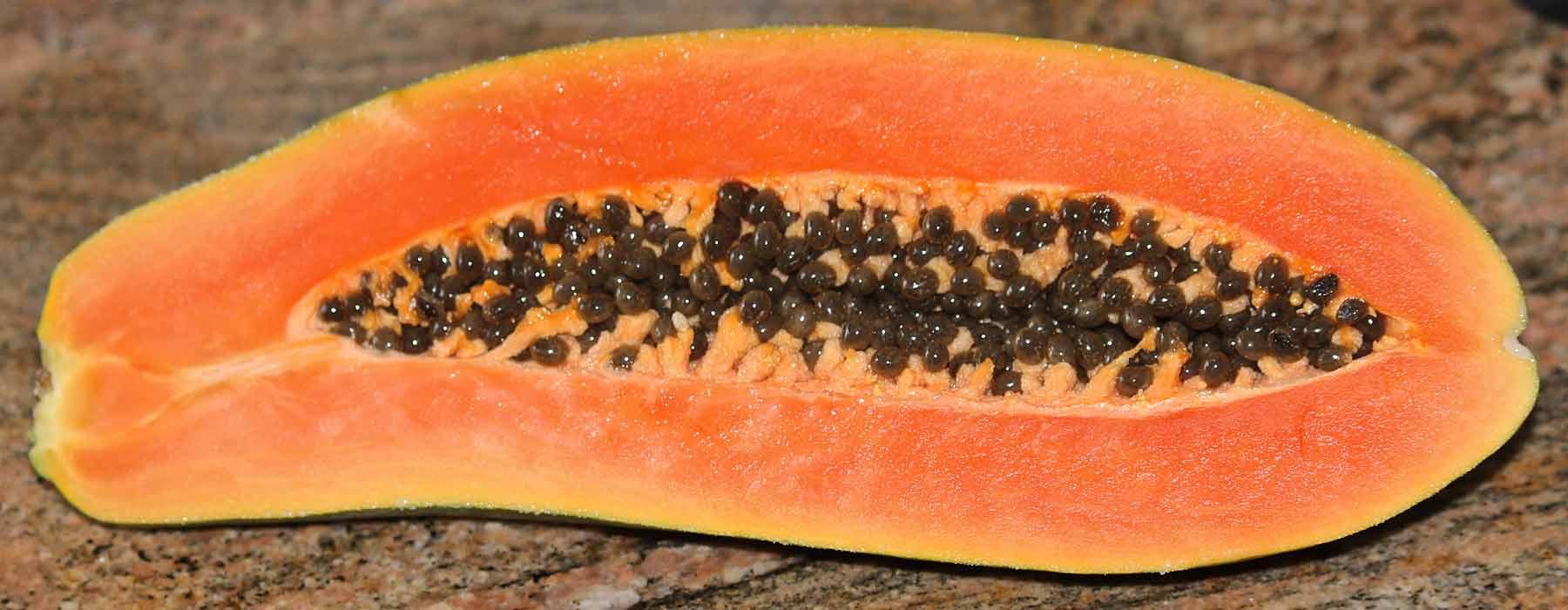 papaya, also known as pawpaw
