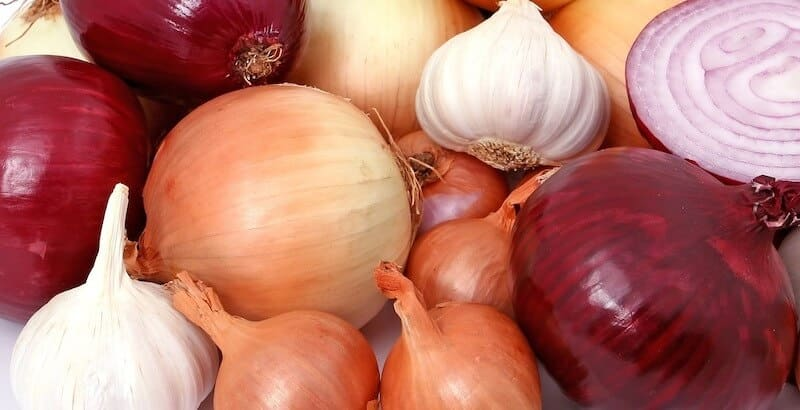 red and white onions and garlic bulbs