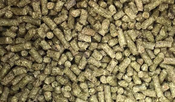 Guinea pig pellet food