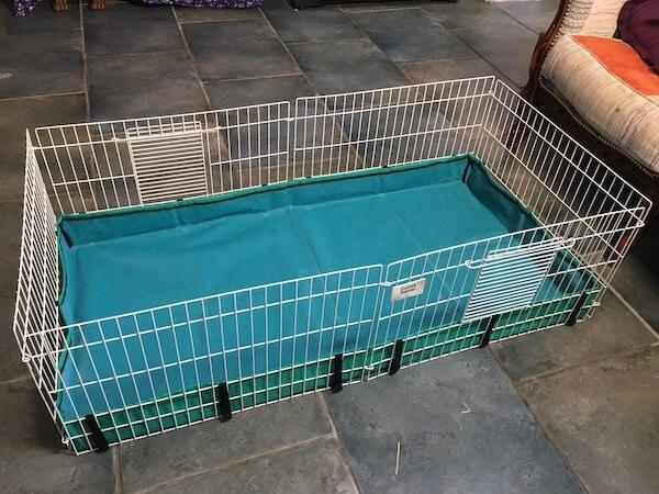Midwest Guinea Pig Habitat Cage