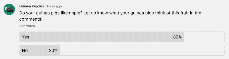 """Poll results for """"do guinea pigs like apple"""""""